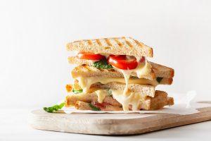 best-sandwich-maker